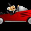 高齢者の運転は危ない?:安全運転に必要な認知機能とは?