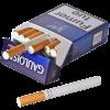 タバコは害?メリット?カビのアレルギー、夏型過敏性肺炎との関係