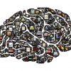 認知機能のテストのまとめ:加齢、脳卒中、認知症による機能の低下